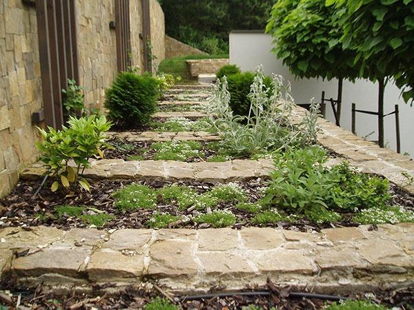 Plánovanie záhrady krok po