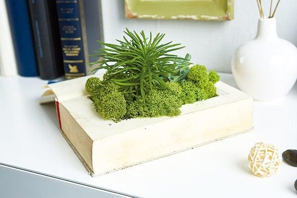 Kniha ako záhradka