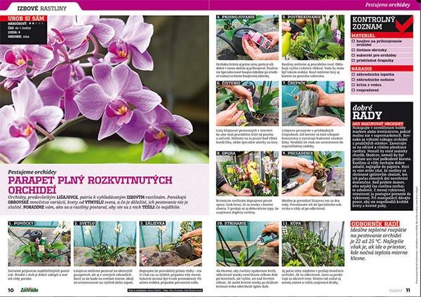Aktuálne vydanie časopisu Záhrada