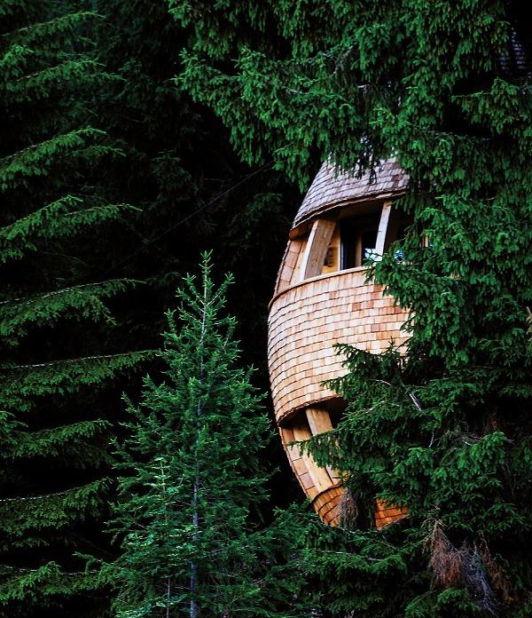 Jedinečný dom na strome