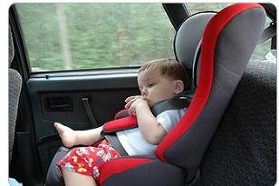 Dieta v aute