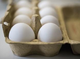 Najväčší potravinový škandál leta:
