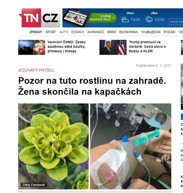 Češka ostrihala obľúbenú rastlinu,