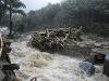 Silné búrky v Indii si vyžiadali svoje obete: Vyše 40 ľudí prišlo o život