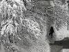 Na Balkáne udreli mrazy: Treskúca zima má prvú obeť