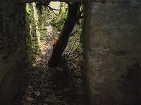 Podzemné priestory môžu ukrývať nacistické poklady