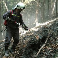 Lokálne ohniská dohasujú hasiči pozemnou technikou.