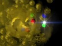 Neutróny a protóny sa vplyvom zrážky roztápajú