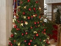 Vianočné plány politikov  Koľko minuli tento rok na darčeky! 7cf14841bc3