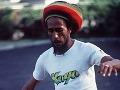 Z Boba Marleyho je parazitný kôrovec