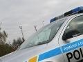 Polícia v Česku zadržala