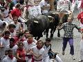 Posledný tohtoročný beh s býkmi: Štyria zranení, celkovo však stovky
