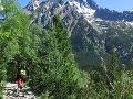 Turisti pozor: V Tatrách pília stromy, chodníky sú dostupné len obmedzene