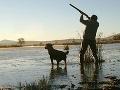 Na poľovačke zastrelili otca s dcérou: Poľovníci si ich pomýlili s jeleňom