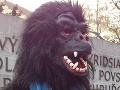 Karneval v uliciach Ria ovládnu gorily a čarodejnice