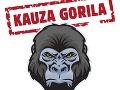 Odchádzajúci šéf tímu Gorila prehovoril o vyšetrovaní! Kočnerova nahrávka je pravá, potvrdila aktérov