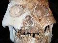 Prevratný objav: Našli fósílie nového druhu predchodcu človeka