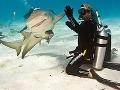 Krásne FOTO: Vysmiaty žralok si tľapol s potápačom!