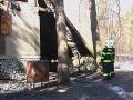V záhradkárskej osade zhorelo 12 nevyužívaných chatiek
