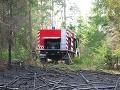 Hasiči na Záhorí zasahovali pri požiari lesa