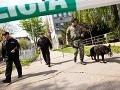 Bratislavskí policajti v pohotovosti: Anonym opäť nahlásil bombu na súdoch