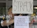 Učiteľom nepomôže štrajk, ale ich argumenty, tvrdí analytik