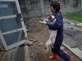 Zachránili 300 psov, ktoré mali skončiť na tanieroch vo Vietname