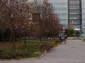 Muža v centre Bratislavy