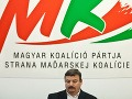 SMK si v decembri zvolí nové vedenie, Berényi chce obhájiť svoj post