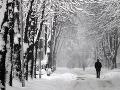 Snehová búrka zasiahla Kanadu: 100 tisíc domácností ostalo bez elektriny!