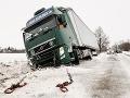 ONLINE Snehové peklo bude pokračovať: Do rána môže napadnúť až 40 cm snehu!