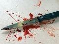 Dobodal malých synov nožom, podpálil dom a spáchal samovraždu
