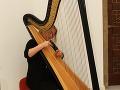 Svadba sa konala v romantickom kaštieli, ktorý rozozvučali tóny harfy.