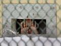 USA posilnili lekársky personál na Guantáname, majú zvládnuť hladovku väzňov