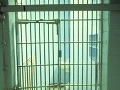 Nebezpečný zločinec ušiel z väzenia: Von sa prekopal lyžicou