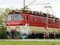 VIDEO Buďte opatrní: Takto vyzerá zrážka chodca s vlakom!