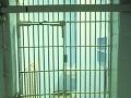 Rozhodnutia sa zatiaľ nedočkali: Obvinení v kauze Nagyová zostávajú vo väzbe