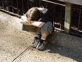 Vedúci skautov zneužili desiatky detí, posedia si desať rokov