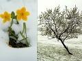 Počasie sa celú jar blázni, Európu ovládol chlad: Čo je za tým?