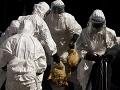 Obavy sa naplnili: Kmeň vtáčej chrípky útočí aj na ľudí