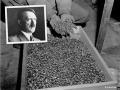 Archeológ vraj našiel kľúč k obrovskému pokladu nacistov: Sem Hitler zakopal zlato!