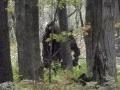 Po 5 rokoch bádania vedci potvrdili: Mýtický tvor naozaj existuje, tu je ich VIDEO!
