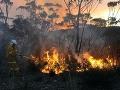 Požiare v Austrálii podľa vlády nesúvisia s klimatickými zmenami