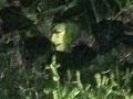 Britka uvidela z okna tvár čarodejnice: Toto je jej FOTO!
