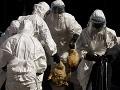 Vysoko nákazlivá hrozba z Poľska! Slovensko je v pozore, u susedov sa o slovo prihlásila vtáčia chrípka