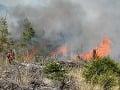 Požiare v Tatrách ničili vlani najmä mladé lesy