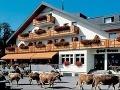Útok na Slováka (18) pred hotelom vo Švajčiarsku: Knokautovali ho a zmizli!