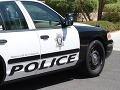 Na policajné auto spadol medveď: Mierilo skontrolovať hlásenie o predávkovaní drogami