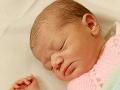Nezákonné adopcie novorodencov v Chile: Podozrivým v kauze je aj kňaz