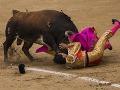 FOTO Býky zvíťazili nad človekom: Zranili troch toreadorov!